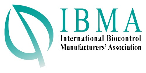 logo ibma-global web